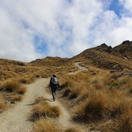 Hiking The South Island of New Zealand